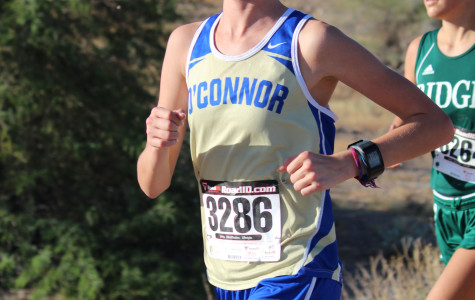 Cross country team races to a great finish at state