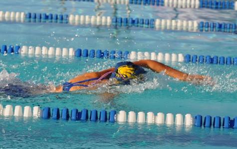 Swim and dive end season with a splash