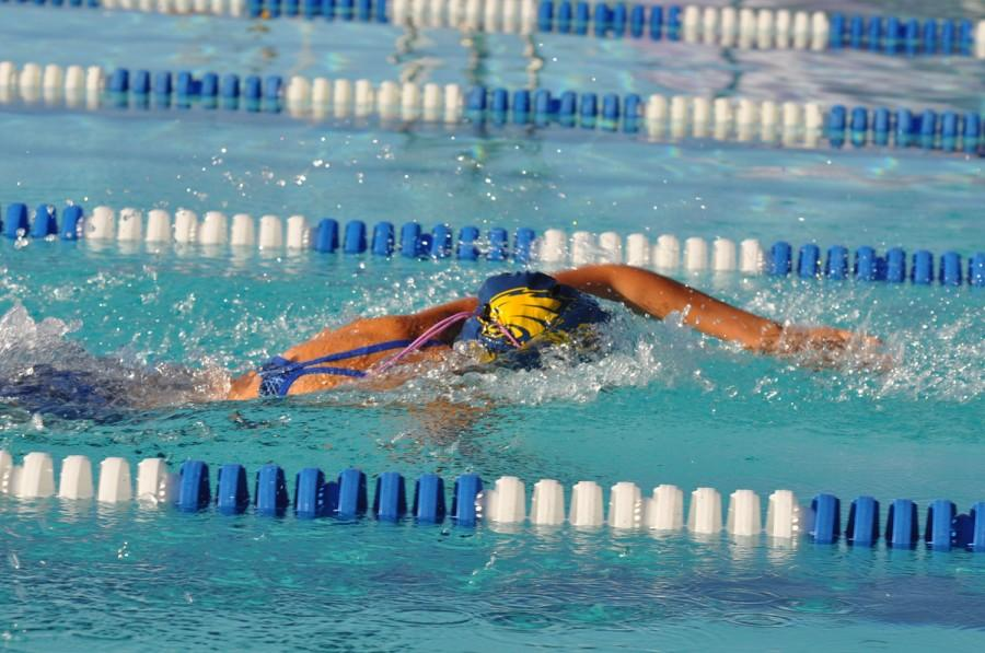 Mayley+Madrid%2C+senior%2C+made+finals+in+the+100+Freestyle+and+the+50+Freestyle+at+Regionals.+She+also+swam+in+two++different+relays.