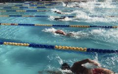 Swim and Dive is making waves in excitement for new season