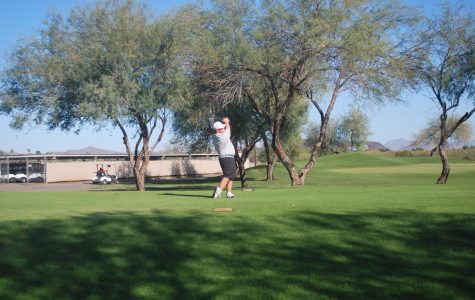 Golf looks to succeed in state playoffs