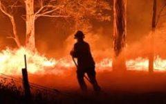 Australian bushfires ravage across the country
