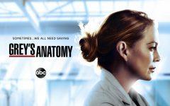 Greys Anatomy Season 17 Preview