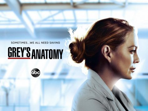 Greys Anatomy Season 17 Preview